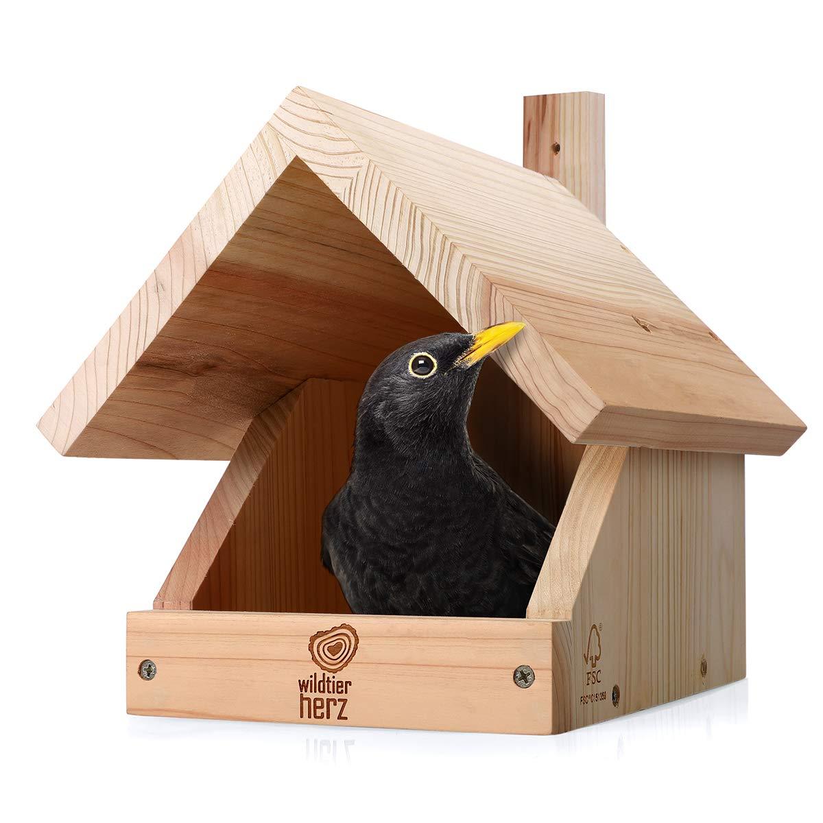 corazón Animal Salvaje | Nido para Mirlo - Resistente a la Intemperie y Sin Tratamiento, Caja Nido de Madera, Casa de Pájaros para Criadores de Media Cueva: Amazon.es: Productos para mascotas