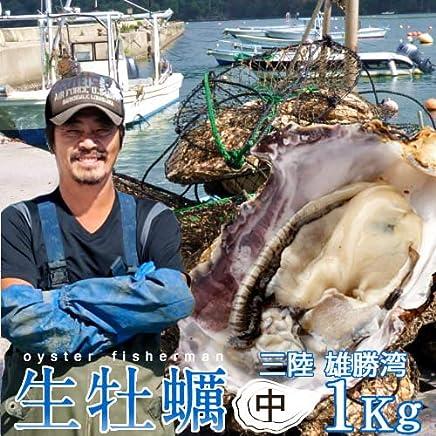 生牡蠣 殻付き 1kg 中 生食用 宮城県産 漁師直送 格安生牡蠣お取り寄せ