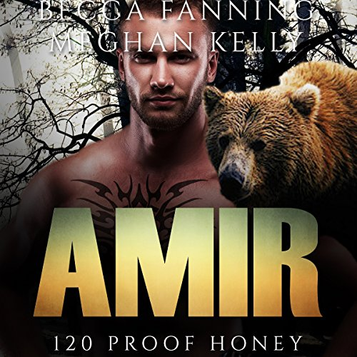 Amir audiobook cover art