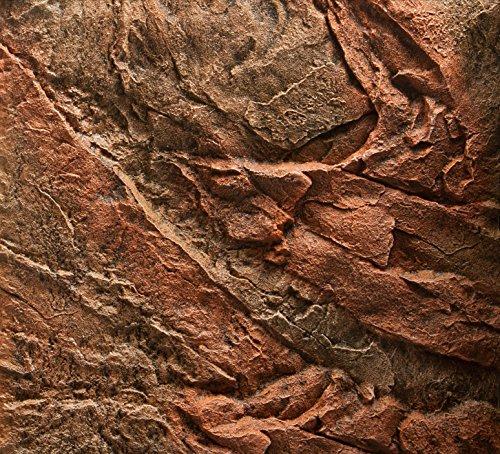 Juwel–Acuario Decorativo Fondo Cliff Oscuro 600x 550