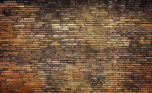 Mural 20144_P-MS, fotobehang, behang, muurschildering wereld-der dromen   oude bakstenen muur bakstenen muur bakstenen rood leeftijd P8 (368cm. x 254cm.) bruin, oranje
