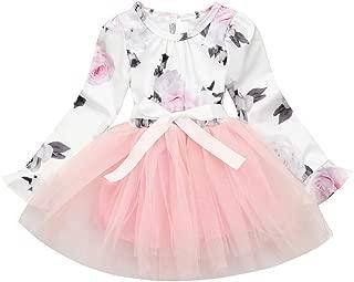 Toddler Fairy Lace Princess Baby Boho Girls Dress Ruffles Ballerina Tutu Baby Dress Up Outfits