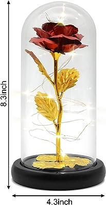 Rose dans un verre avec rose lumineuse dans le verre - Belle et la bête - Fleurs artificielles à LED.