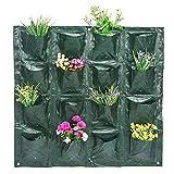 Bolsa De Cultivo De Planta, Bolsas para plantas, Bolsas de plantación de bolsillos, planta de jardín vertical Cultivo de flores Greening tapiz de pared Jardinera de plantador(16 Pockets)