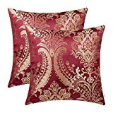 CaliTime Pack of 2 Supersoft Throw Pillow Covers Cases...