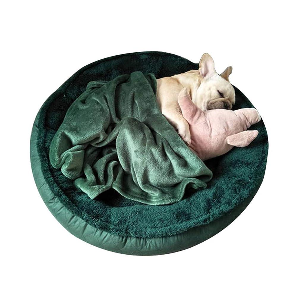 責めパット十分ではないペットの巣ペットのベッド猫犬の犬小屋の小さな犬小屋のソファクッション猫のマットペット用品ペット猫の家の睡眠マットペットベッド緑の愛ペットフルサイズのソファの快適さキルトの贈り物を送る (Color : GREEN, Size : S)
