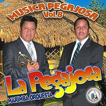 Música Pegajosa Vol. 8. Música de Guatemala para los Latinos