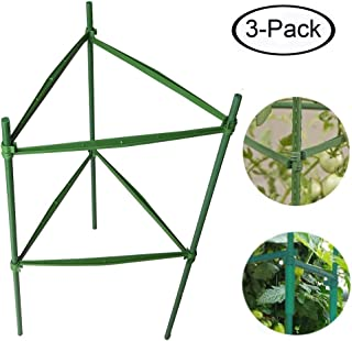 Best heavy duty fruit cage Reviews