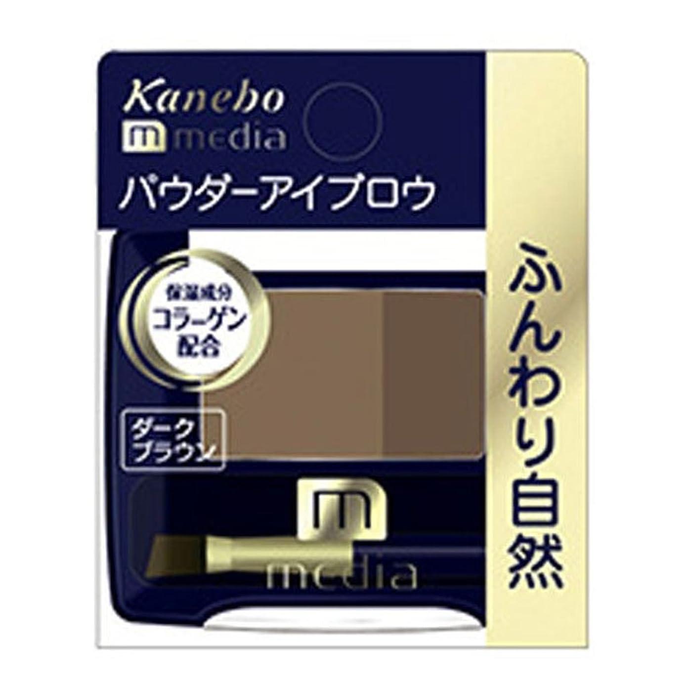トリプル毒液接尾辞【カネボウ】 メディア パウダーアイブロウa DB?1