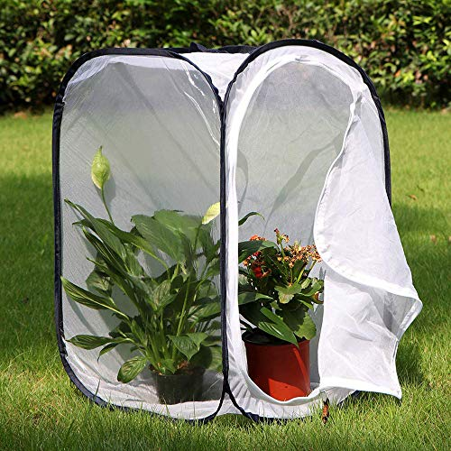 Ckssyao Insect Cage Mesh Plant Greenhouse Tent, Foldable Butterfly Net with Zipper, Portable Butterfly Cages Anti-bird Cover Plants Protection