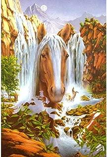 5D Diy Full Diamond Diamond Painting Mosaic Drawing Plaster Cross Stitch Home Decoration Painting Embroidery Set Horse Head Waterfall Wmbhv