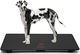 large dog scale