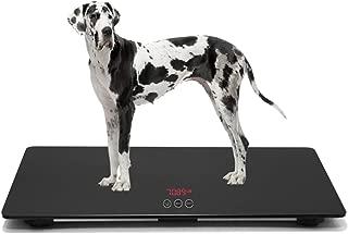 Best platform for dogs Reviews