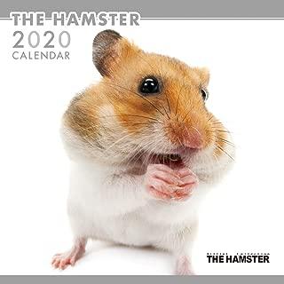 カレンダー 2020 壁掛け THE HAMSTER ハムスター 403340 2019年9月-2020年12月 アーリスト はむすたー