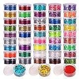 48 Farben Glitzer Set, FANDAMEI 24 Farben Holographische Pailletten + 24 Farben Glitzerpuder Glitzer...