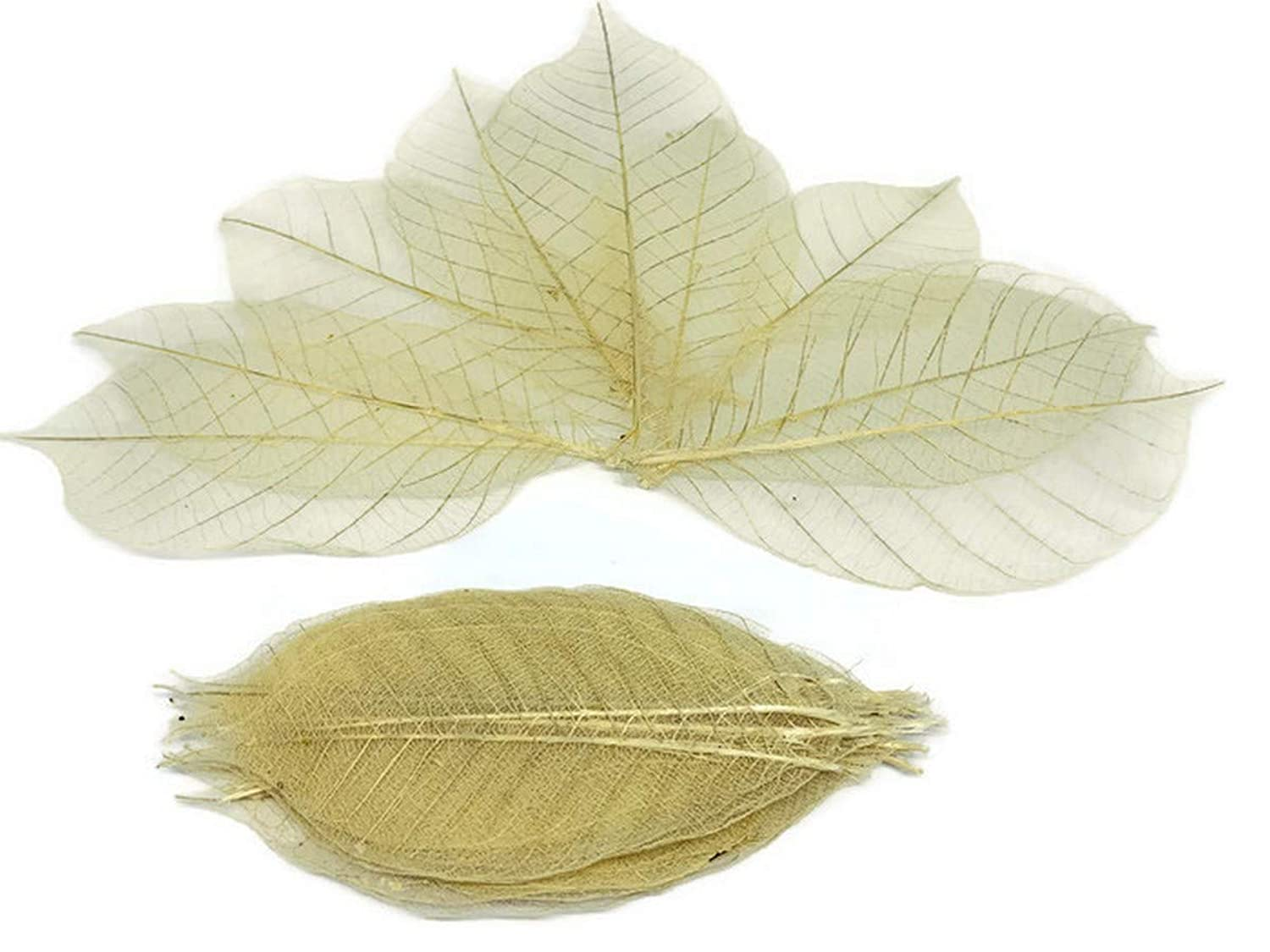 100 pc Mini Rose Leaf Mulberry Paper Mixed Color Natural Skeleton Rubber Tiny Leaves 10 mm Supplies Card Scrapbooking Artificial Embellishment Wedding Doll House DIY F022