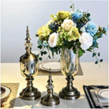 Flower Bottle Creative Light Luxury Vase Table Glass Container Set with Dried Flowers Black Cover (1 Set 2 Pieces)