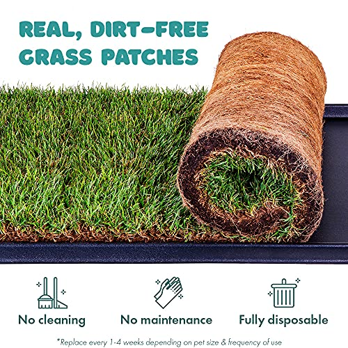 Fresh Patch Mini - Real Grass Pee and Potty Training Pad for Dogs up...