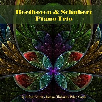 Beethoven & Schubert: Piano Trio