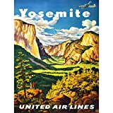 Wee Blue Coo TRAVEL Yosemite United Airlines California USA