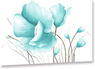 Best blue poppy flowers pictures Reviews