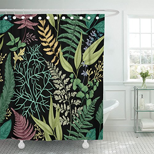 Emvency Shower Curtain Black Leaf Spring Leafy Green Vintage Floral Leaves and Herbs Botanical Colorful Engraving Herbal Waterproof Polyester Fabric 72 x 72 inches Set with Hooks