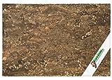 XL Korkrückwand (Rückwand Terrarium), 3D Kork-Rückwand 90 x 60 cm | gereinigt & desinfiziert
