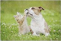 HD子猫とアメリカンスタッフォードシャーテリア犬の遊び9032980(52x38cmの大人向けプレミアム500ピースジグソーパズル)…