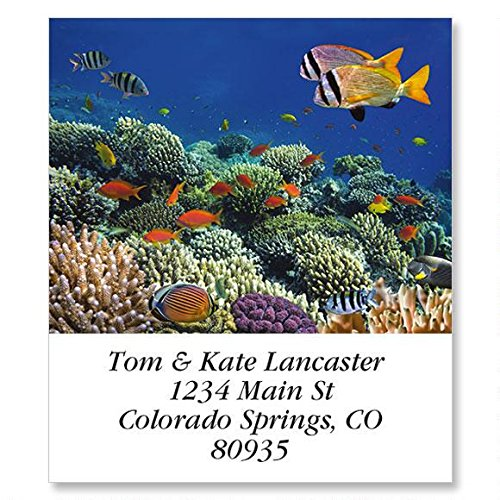 Jewels of The Sea Self-Adhesive, Flat-Sheet Select Address Labels by Colorful Images (12 Designs), Count 144