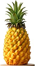 Best picture of pineapple fruit Reviews