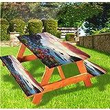 LEWIS FRANKLIN - Cortina de ducha para playa de lujo, cubierta de mesa de picnic, diseño de amapolas y claveles de muelle, 28 x 72 pulgadas, juego de 3 piezas para mesa plegable