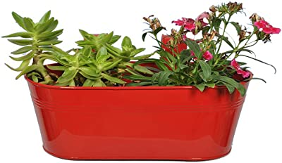 TrustBasket Oval Planter Set of 2 Magenta Color 12 * 7 Inches
