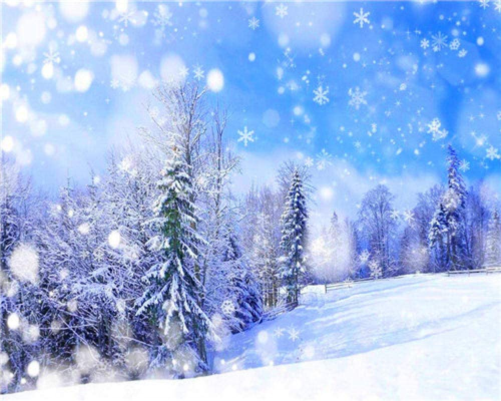 DIY Long Beach Mall 5d Diamond Painting Kits Fashionable for D Snow Forest Round Adults Full