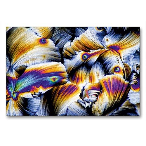 CALVENDO Premium Textil-Leinwand 90 x 60 cm Quer-Format Äpfelsäure mit Gibberellinsäure, Leinwanddruck von Thomas Becker