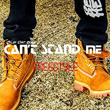 Can't Stand Me (Freestyle)