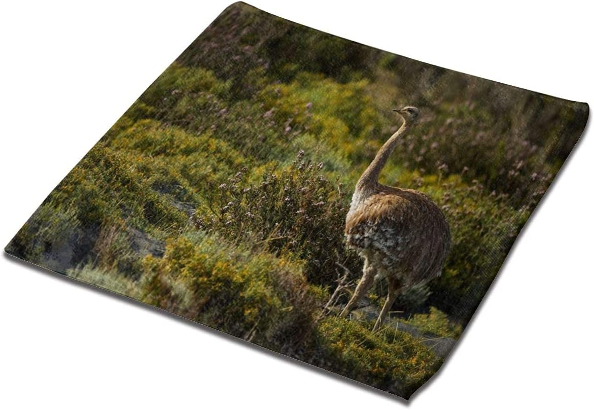 LuckyTagy Washcloth Towel New Free New popularity Shipping Special Square Face Ostrich Clot