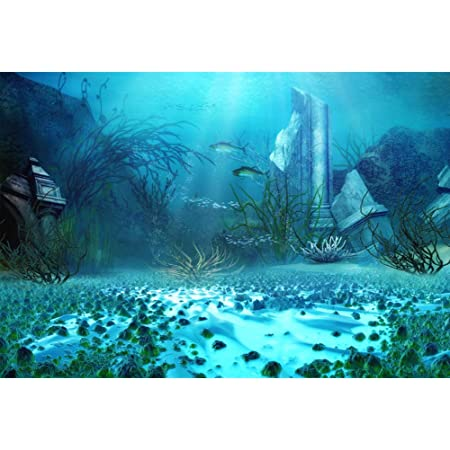 ScottDecor Winter Underwater World Backdrop Fir Trees Mountainside Underwater World Backdrop Aquarium Corals Photography L30 X H18 Inch