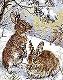 N / A ysyxin Animal Conejo Pintura por número Pintura en Lienzo impresión en Lienzo decoración del hogar Arte de Pared Pintura a mano-40 x 50 cm(Sin Marco)