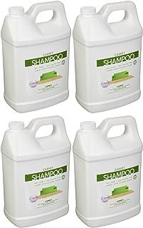 Kirby 1 Gallon Carpet Shampoo, 252802 (4 pack)