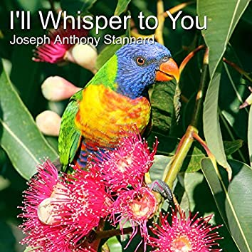 I'll Whisper to You