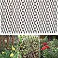 86 York Expandable Willow Lattice Fence Panel for Climbing Plants Vine Ivy Rose Cucumbers Clematis (2)