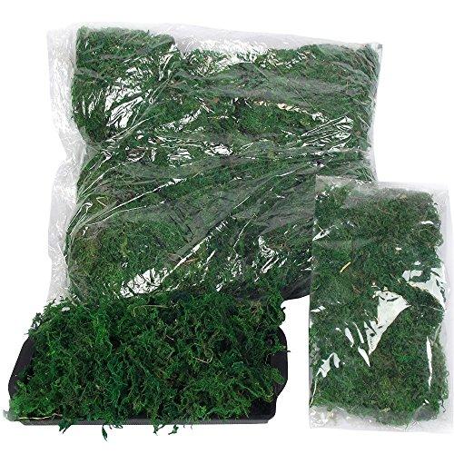 Bulk Bag of Dried Moss! Artificial Garden Landscaping Crafts