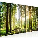 Cuadro en LienzoPaisaje Forestal 200 x 80 cm - XXL Impresión Material Tejido no Tejido Artística Imagen Gráfica Decoracion de Pared -5 piezas - Listo para colgar -503855b