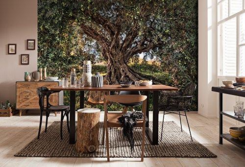 Komar - fotobehang OLIVE TREE - 368 x 254 cm - behang, wand, decoratie, wandbedekking, wanddecoratie, wanddecoratie, olijfboom, bladeren, natuur, boom - 8-531