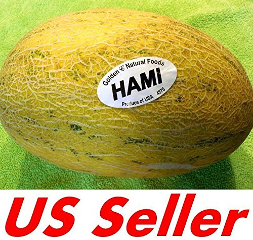 35 PCS ORGANIC Hami Melon Seeds E60, Honey Melon...