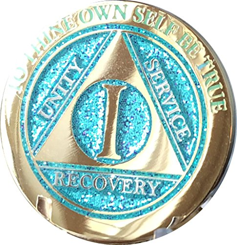 1 Year Elegant Glitter Aqua Turquoise Gold Silver Bi-Plated AA Medallion Chip