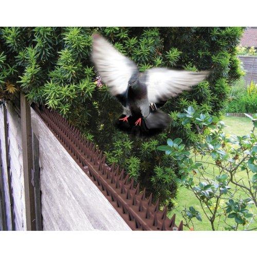Bosmere Garten-Zaun-Schutz-Aufsatz 3m zackig N479