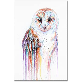 Barred Rainbow Owl by Michelle Faber, 12x19-Inch Canvas Wall Art