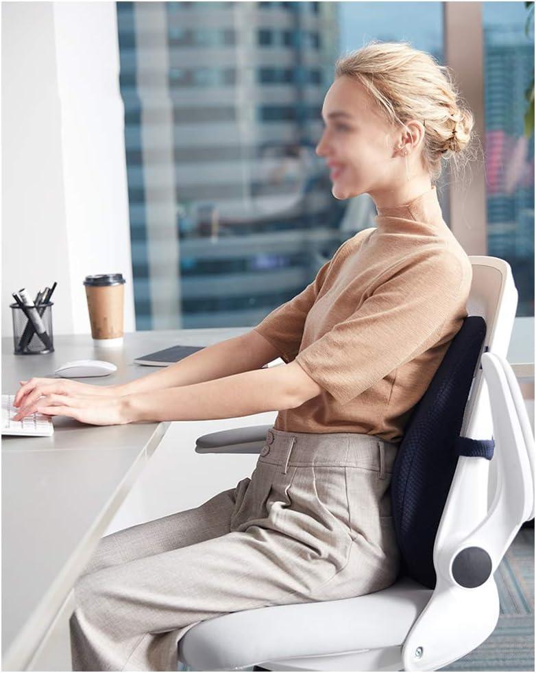 QWET Arbeitssitzkissen Polyester,f/ür B/üro,sitzend,Taillenschutz,A