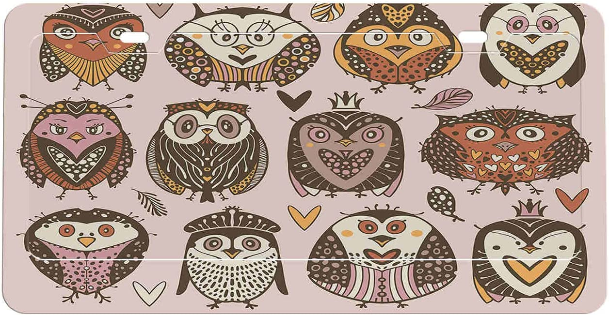 Cartoons Owls License Quality inspection Fresno Mall Plate Frame Covers Set Abstract Pcs 2 6x12